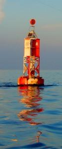 ECOTOURUSA ecotourfla kayaksouthflorida judysummers.com