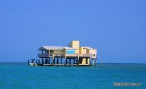judy summers photos, eco tour usa, eco tour fla, kayak south florida