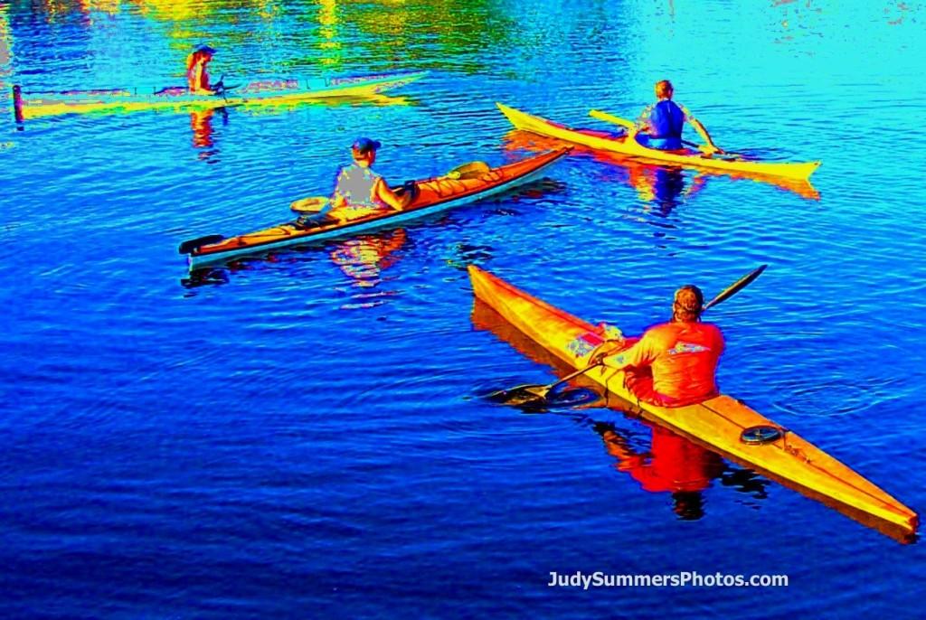 kayak south florida fort lauderdale